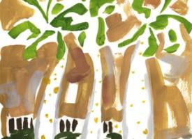 IP009 – Botanical Garden Ein Gedi